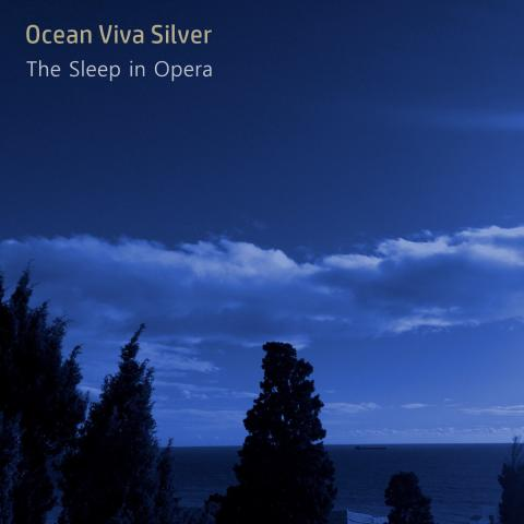 The Sleep In Opera